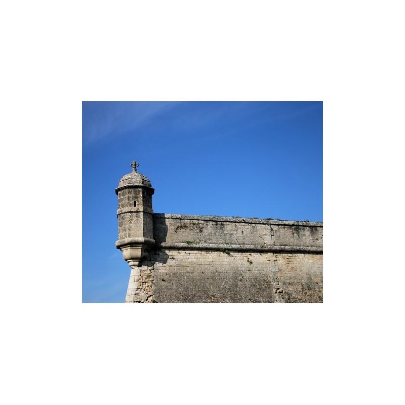 Clos de l'Echauguette 2016 en coffret bois - Vignoble de la Citadelle de Blaye
